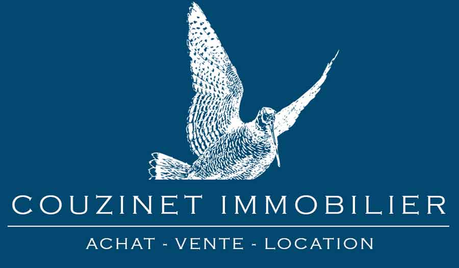 Couzinet Immobilier